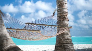 Hangmat op strand out of office